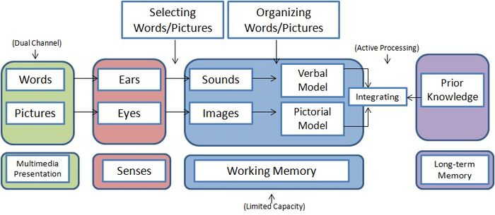 Cognative Theory of Multimedia Learning